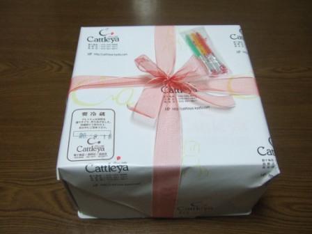 2008_junichibi2290099