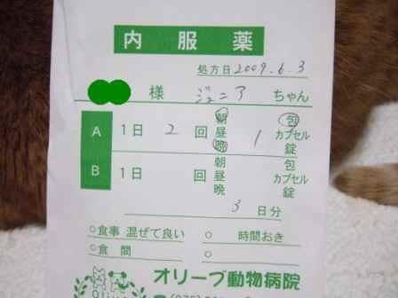 2009_photo120089_2_2